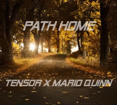 Tensor x Mario Quinn Path Home